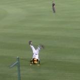 『甲子園~'15.6月交流戦❷阪神vs.ロッテ』の画像