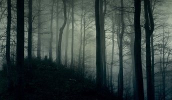 死ぬ程洒落にならない怖い話を集めてみない?『首取りの祠と不可解な死』