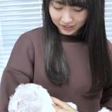 『【乃木坂46】かっきー『これは私の子・・・』www 賀喜遥香と早川聖来になでなでされまくるこの光景wwwwww』の画像