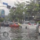 『大雨、洪水と猫』の画像