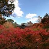 『東福寺 秋期拝観 に行ってまいりました。』の画像