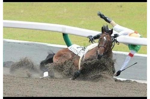 「馬から落馬する」は二重表現で間違い←は?・・・・・・のサムネイル画像