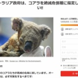 『 「捨身飼虎」とコアラの保護』の画像