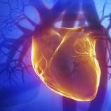 『心臓と心のケア』の画像
