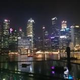 『シンガポール観光① マリーナベイ・サンズでも一人飯でフードコートに。』の画像