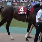 『今週は川崎競馬開催週』の画像