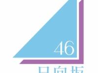 欅坂のファンは、日向坂のロゴから欅が排除されて乃木坂のだけ入ってる事についてどう思ってるの?