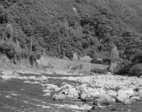 """『レイル82号""""武庫川をめぐる鉄道風景""""が出来上がっています』の画像"""