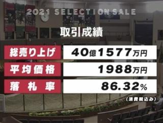 【競馬】セレクションセール2021 売上総額40億円越えで昨年を7億5000万円上回るレコード