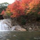 『『秋色を感じて』府中市 三郎の滝』の画像