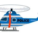 【GIF】ヘリ墜落の瞬間パニックってて草wwwwwwwwwww