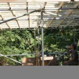 『小屋作り・白萩』の画像