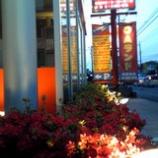 『店舗の周りはお花畑』の画像