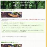 『戸田市後谷公園コンサート&野の花屋さんナイトバザール・シバケンのアジアンナイトは明日開催』の画像