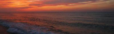 SEABASS‐STYLE~ビッグワンを求めて~ イメージ画像