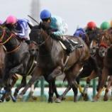 『海外トレーニングセール出身の外国産馬2頭が優勝!!』の画像