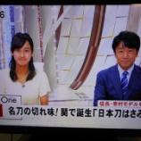 『東海テレビ みんなのニュースOneで『日本刀はさみ』が紹介されました!』の画像