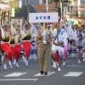 第15回湘南台ファンタジア2013 その61 (西口パレード・相洲大和あずま連)
