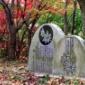 織姫公園もみじ谷の紅葉2014 様々な色合い鮮やかに彩るもみじ