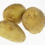 ジジイが線路内にジャガイモを置いたため電車が止まるwwwwwwww