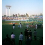 『(番外編)神宮球場★日本プロ野球交流試合』の画像