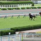 『【宝塚記念結果】クロノジェネシスが突き抜け6馬身差圧勝!2年連続牝馬V』の画像