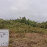 『国東太陽光発電所建設予定地 除草作業』の画像