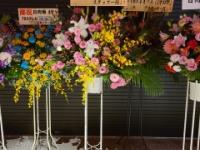 【悲報】オードリーからの花がない。