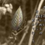 『フォト短歌「人生は」』の画像