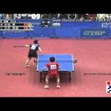 『高速卓球:平野と張本と丹羽、そして大矢英俊という奇才』の画像