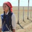 草原の実験 無料動画