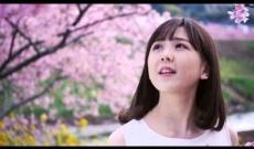 元乃木坂46大和里菜のオリジナル曲「sakura」MV公開