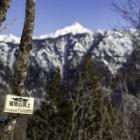 『福地山(ふくじやま)1.672M』の画像