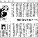 『夏野菜で体をクールダウン|産経新聞連載「薬膳のススメ」(48)』の画像
