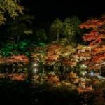 【画像】京都の紅葉撮って来たよー