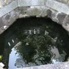 『随想霊草 No22 飲めない井戸と飲める水の井戸!?多井畑の井戸の水とは?』の画像