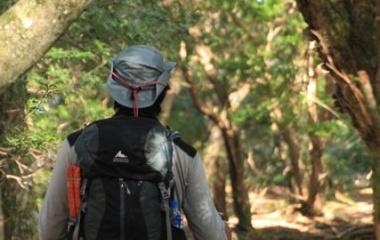 『日本百名山 天城山に行ってきましたょ☆その3』の画像