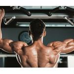 懸垂・腹筋ローラー・スクワット ⬅︎これだけでカッコいい体になれるという事実w