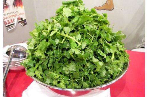 【食べ物】パクチーってさwwwwwwwwwwwwwwwのサムネイル画像