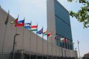 国連「平和に生きる権利」採択、日米英などは採決反対「議論が熟してない」