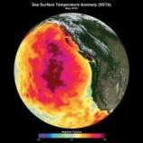 『太平洋「死の暖水塊」』の画像