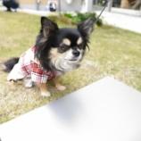 『アンチノールキャラバン☆カメラ教室に参加しました♡』の画像
