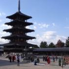 『奈良 11/15/2011 晴れ 続』の画像