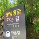 『JALPAK×食べあるキング「韓国」【3日め】(その5)洞窟はワイン貯蔵庫だった「光明洞窟」(韓国・ソウル)』の画像