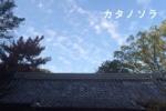 威風堂々、郡津神社のとこソラ【カタノソラNo.26】