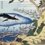 ニュージーランド 日本の捕鯨再開に「深く失望」