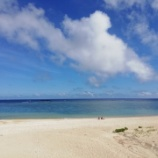『初奄美大島』の画像