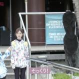 『【乃木坂46】北野が『未央奈にそっくり!』と言っていたニューカレドニアの像がヤバすぎるwwwwww【今野さんほっといてよ!】』の画像