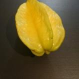 『楊桃 スターフルーツの味』の画像