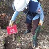 『地雷、不発弾の回収』の画像